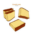 japanese sponge cake - castella hand draw sketch vector image vector image