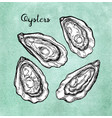 oysters set on old paper vector image vector image