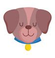 pet little cute dog collar head cartoon isolated vector image vector image