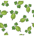 Seamless Pattern of Gooseberry vector image vector image