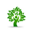tree man figure abstract icon vector image