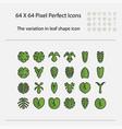 variation leaf shape icon vector image