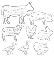 Vintage outline diagram meal cutting of domestic vector image