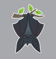 bat handing upside down on branch vector image