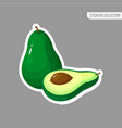 green fresh avocado isolated sticker vector image
