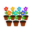 growing flowers symbol flat isometric icon or vector image