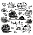 hedgehog set hand drawn figures vector image vector image