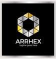 hexagon arrow logo vector image