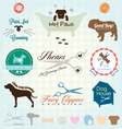 Retro Pet Grooming Labels and Icons vector image vector image