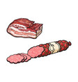sketch salami sausage and lard isolated vector image vector image