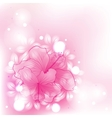 colorful background flowers vector image