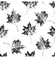 black and white seamless pattern of autumn leaves vector image vector image