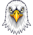 cartoon eagle head mascot vector image vector image