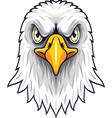 cartoon eagle head mascot vector image