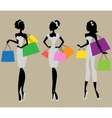 Fashion and Beauty collection vector image vector image