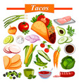 Food and spice ingredient for mexican snack tacos vector image