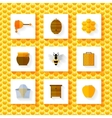 Honey elements set vector image vector image