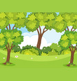 nature scene with trees and lawn vector image
