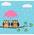 Owls couple under umbrella vector | Price: 1 Credit (USD $1)