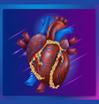 realistic human healthy heart vector image vector image