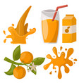 ripe orange juice drink fruits realistic organic vector image