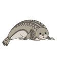 seal zentangle phoca zen tangle wild animals of vector image