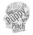 Should You Correct A Puppy With A Pinch Collar vector image vector image