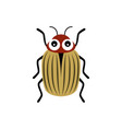 cartoon potato beetle isolated on white background vector image vector image