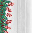 Christmas berries background vector image vector image