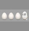 cracked egg cartoon chicken broken eggs with vector image