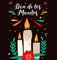 dia de los muertos lettering on mexican holiday vector image vector image