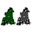 kelantan states and federal territories of vector image vector image