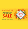 limited time only autumn sale banner horizontal vector image vector image