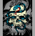 skull with snake vector image