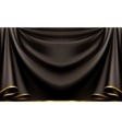 Luxury black background vector image