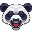angry panda head mascot vector image vector image