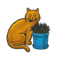 cat eats grass sketch vector image vector image