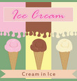 ice cream in various flavor vector image vector image