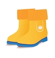 yellow baby gumboots vector image