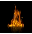 Yellow Orange Fire Flame Isolated on Background vector image vector image