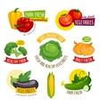 Fresh healthy vegetables labels set Cartoon vector image