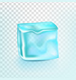 ice cube isolated transpatrent shiny vector image vector image