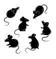 set mice on a white background collection vector image