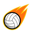 sport ball fire volleyball vector image vector image