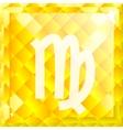 Zodiac Virgo vector image vector image