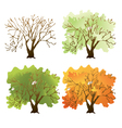 deciduous tree vector image