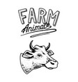 farm animal head a domestic cow taurus bull vector image