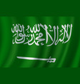flag of saudi arabia 3d design vector image vector image