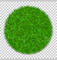 grass circle 3d green plant grassy round field vector image