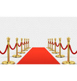 red carpet isolated empty red with gold vector image